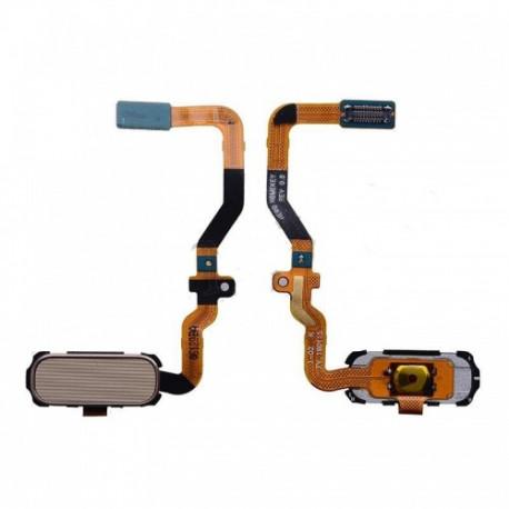 OEM Home-Knopf Flex-Kabel Komplett Gold SM-G930F Galaxy S7